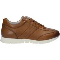 Sapatos Homem Sapatilhas Maritan G 140658 Castanho