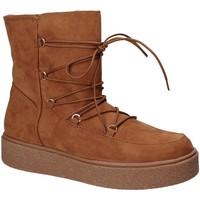 Sapatos Mulher Botins Fornarina PI18TA1138T067 Castanho