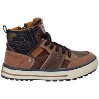 Sapatos Criança Sapatos de caminhada Wrangler WJ17216 Castanho