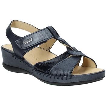 Sapatos Mulher Sandálias Susimoda 2379-03 Azul