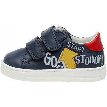 Sapatos Criança Sapatilhas Falcotto 2014629 01 Azul