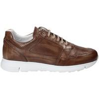Sapatos Homem Sapatilhas Exton 332 Castanho