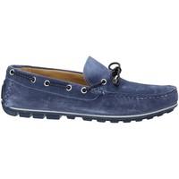 Sapatos Homem Mocassins Rogers 700 Azul