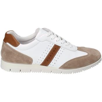 Sapatos Homem Sapatilhas IgI&CO 3121811 Branco