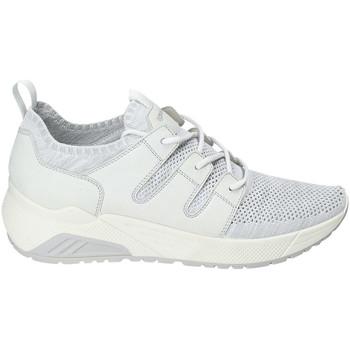Sapatos Homem Sapatilhas IgI&CO 3129322 Branco