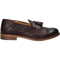 Sapatos Homem Mocassins Exton 3105 Castanho