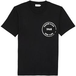 Textil Homem T-Shirt mangas curtas Calvin Klein Jeans K10K104509 Preto