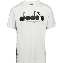 Textil Homem T-Shirt mangas curtas Diadora 502176630 Bege