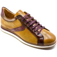 Sapatos Homem Sapatilhas Exton 831 Castanho