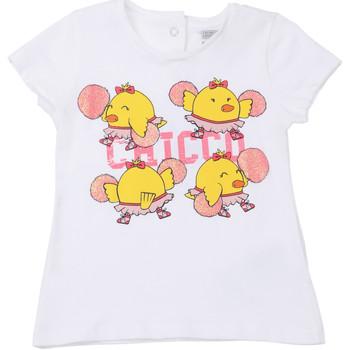 Textil Criança T-Shirt mangas curtas Chicco 09006955000000 Branco