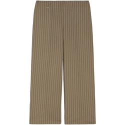 Textil Mulher Calças finas / Sarouels NeroGiardini E060151D Verde