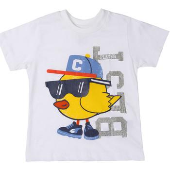 Textil Criança T-Shirt mangas curtas Chicco 09006918000000 Branco