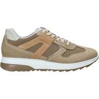 Sapatos Homem Sapatilhas IgI&CO 5129633 Bege
