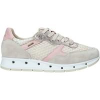 Sapatos Mulher Sapatilhas IgI&CO 5161366 Bege