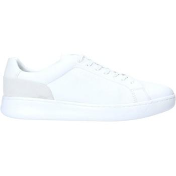 Sapatos Homem Sapatilhas Calvin Klein Jeans F1291 Branco