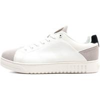 Sapatos Homem Sapatilhas Colmar BRADB S Branco