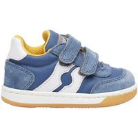 Sapatos Criança Sapatilhas Falcotto 2014666 01 Azul
