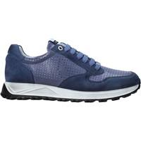 Sapatos Homem Sapatilhas Exton 741 Azul