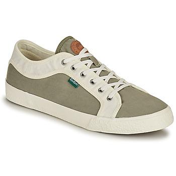 Sapatos Homem Sapatilhas Kickers ARVEIL Cáqui / Branco