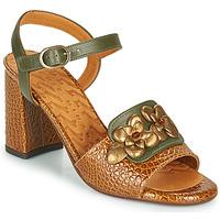 Sapatos Mulher Sandálias Chie Mihara FADIMA Castanho
