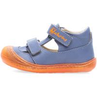 Sapatos Rapaz Sandálias Naturino 2013359-03-1C72 Azul