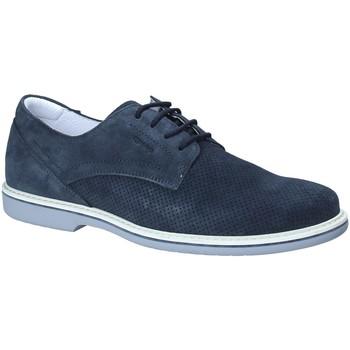 Sapatos Homem Sapatos IgI&CO 1107633 Azul