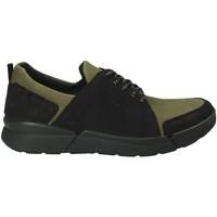 Sapatos Homem Sapatilhas IgI&CO 2126322 Verde