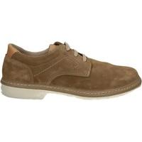 Sapatos Homem Sapatos Enval 7885 Outras