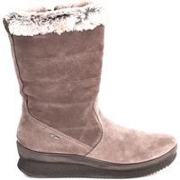 Sapatos Mulher Botins IgI&CO 2167333 Castanho