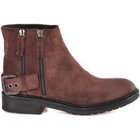 Sapatos Mulher Botins Mally 6324 Castanho