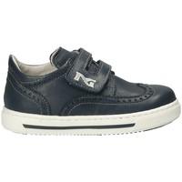 Sapatos Criança Sapatilhas NeroGiardini P823110M Azul
