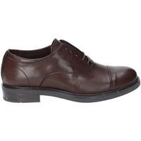 Sapatos Homem Richelieu Rogers 1236 Cinzento