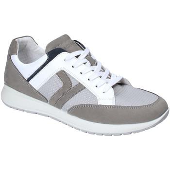 Sapatos Homem Sapatilhas IgI&CO 3125411 Cinzento