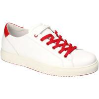 Sapatos Homem Sapatilhas IgI&CO 3132700 Branco