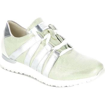 Sapatos Mulher Sapatilhas Grunland SC3293 Verde