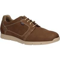 Sapatos Homem Sapatos Baerchi 5080 Castanho