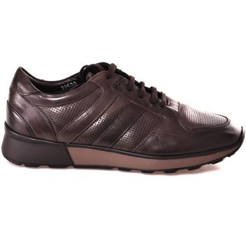 Sapatos Homem Sapatilhas Soldini 20630 2 Castanho