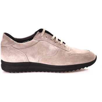Sapatos Homem Sapatilhas Soldini 20610 V Bege