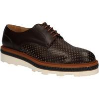 Sapatos Homem Sapatos Rogers WILLY Castanho