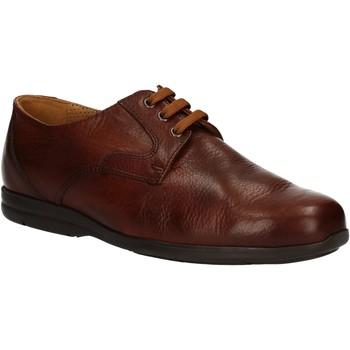 Sapatos Homem Sapatos Fontana 5685-VI Castanho