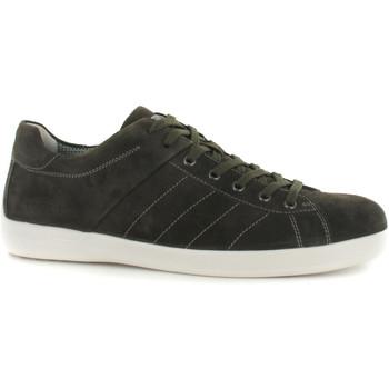 Sapatos Homem Sapatilhas Stonefly 108541 Verde