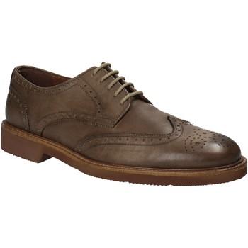 Sapatos Homem Sapatos Maritan G 111084 Castanho