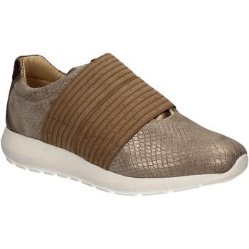 Sapatos Mulher Slip on IgI&CO 7764 Castanho