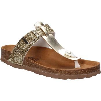 Sapatos Mulher Chinelos Everlast EV-106 Ouro