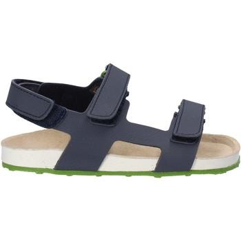 Sapatos Criança Sandálias Grunland SB0831 Azul