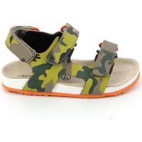 Sapatos Criança Sandálias Grunland SB0832 Verde