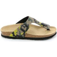 Sapatos Criança Chinelos Grunland CB0406 Verde