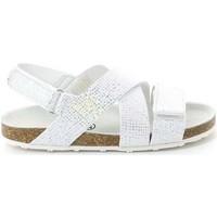 Sapatos Criança Sandálias Grunland SB0813 Prata