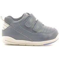 Sapatos Criança Sapatilhas Chicco 01056500000000 Azul