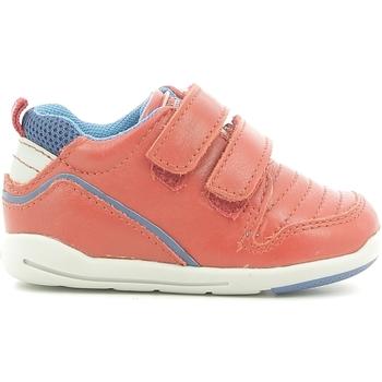 Sapatos Criança Sapatilhas Chicco 01056499000000 Vermelho